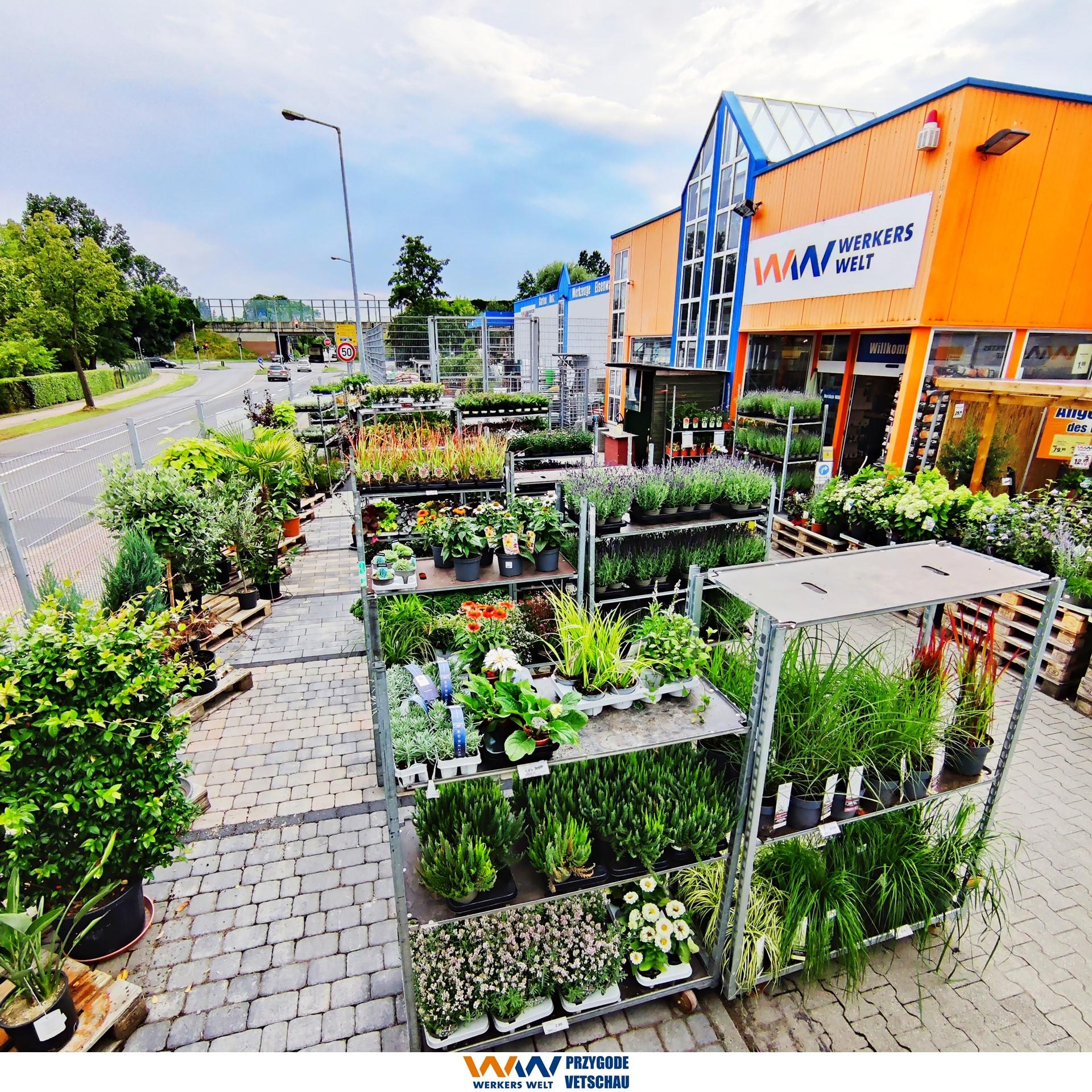 Pflanzen Gartencenter Gartenmarkt